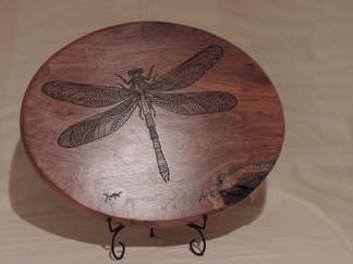 Dragonfly Mesquite Plaque 5.JPG