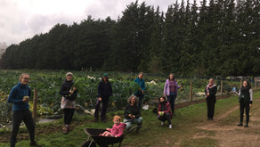 Women who farm