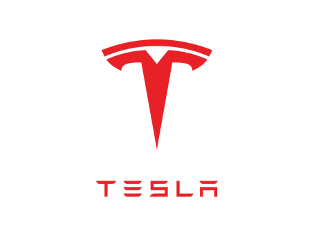 The Temptation of Tesla