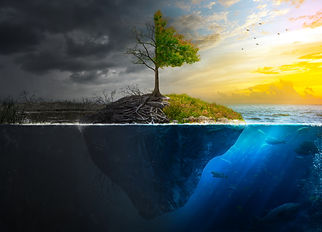 Life and death on a floating island at s