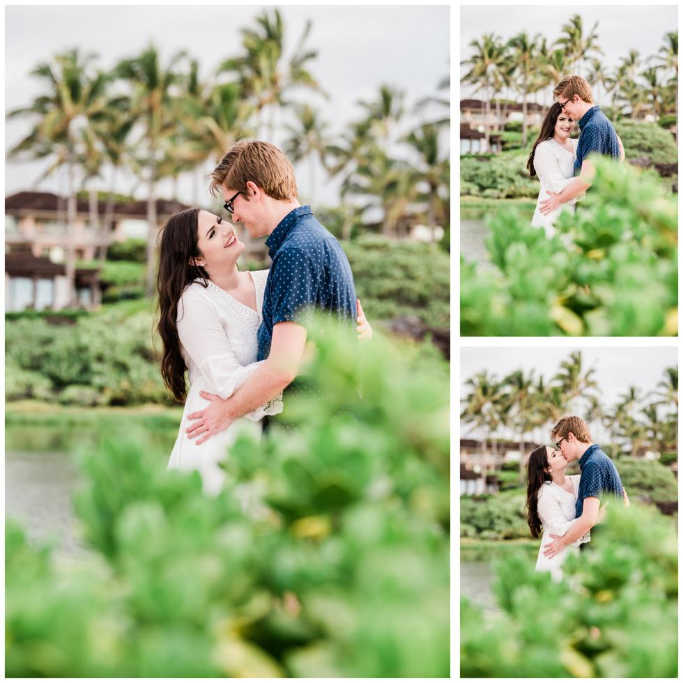 Hawaii proposal_.jpg