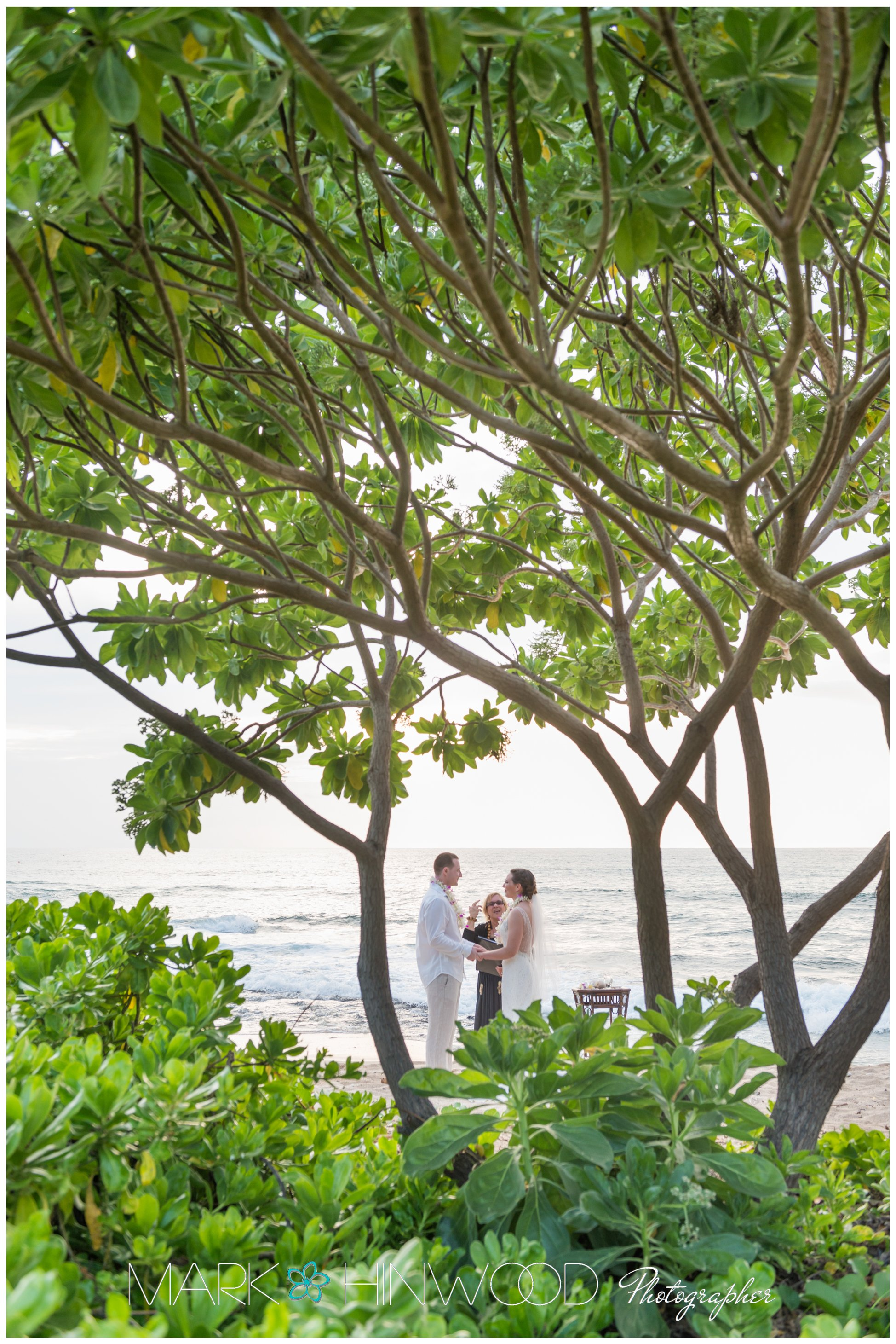 Top Kailua Kona Photographers 7