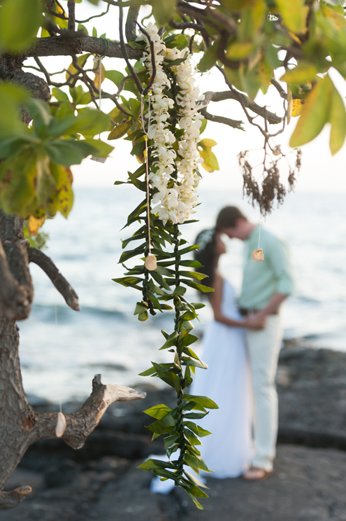Wedding Photographers Big Island
