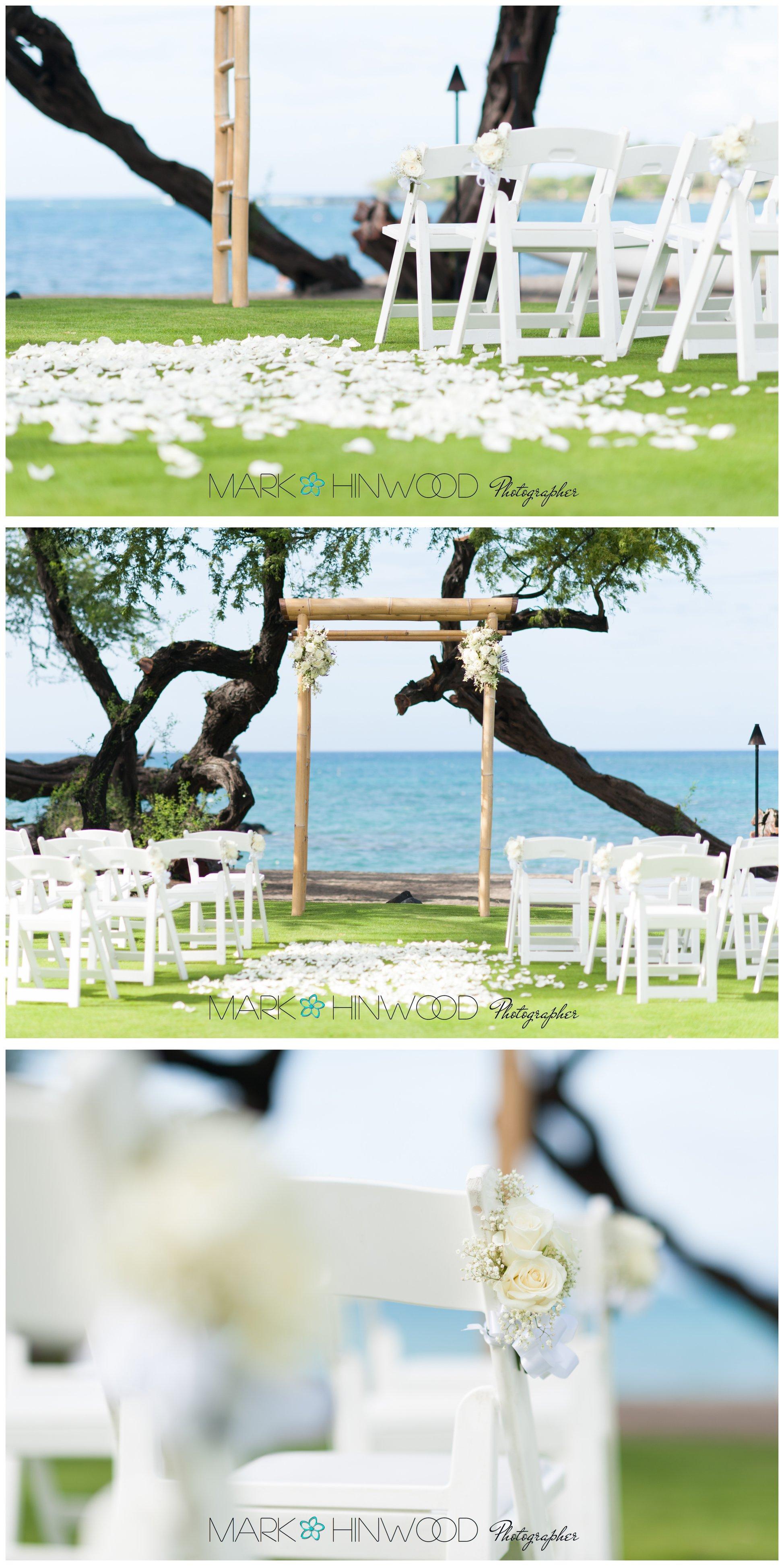 Top Big Island Photographers 1