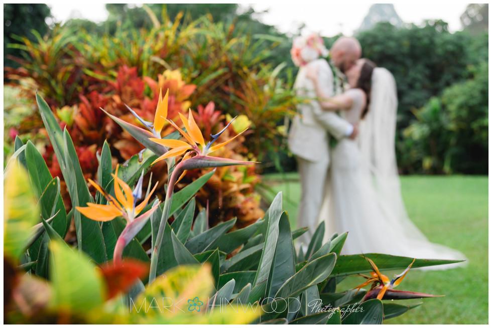 Holualoa Inn Weddings 25.jpg