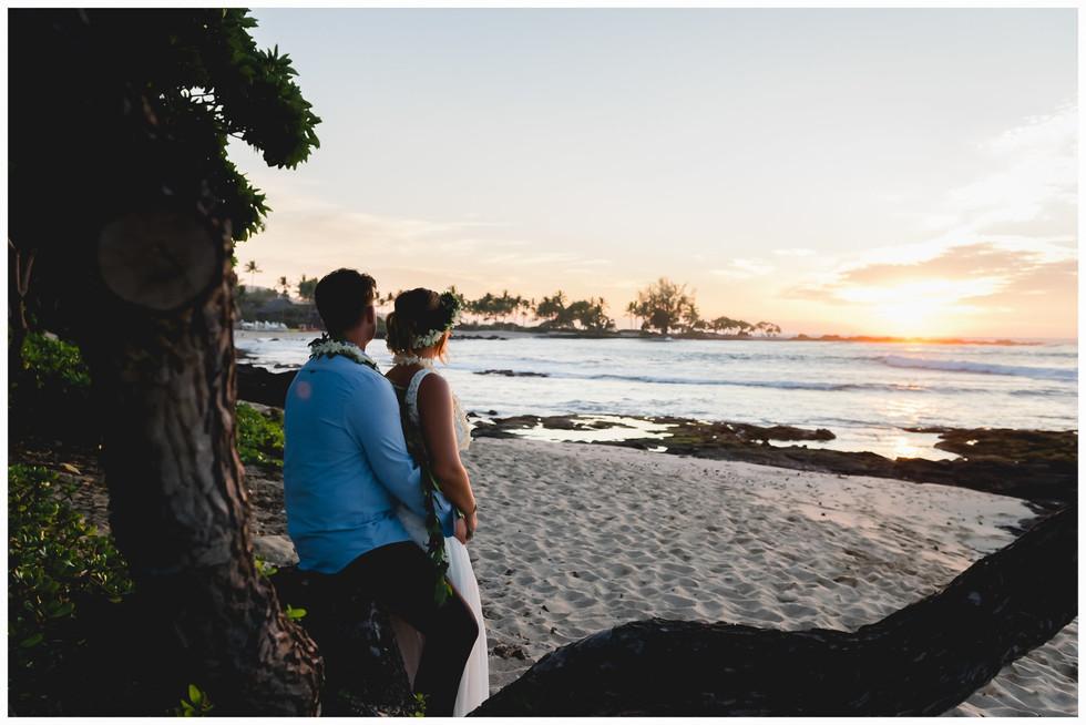 Hawaii Beach Weddings-49.jpg