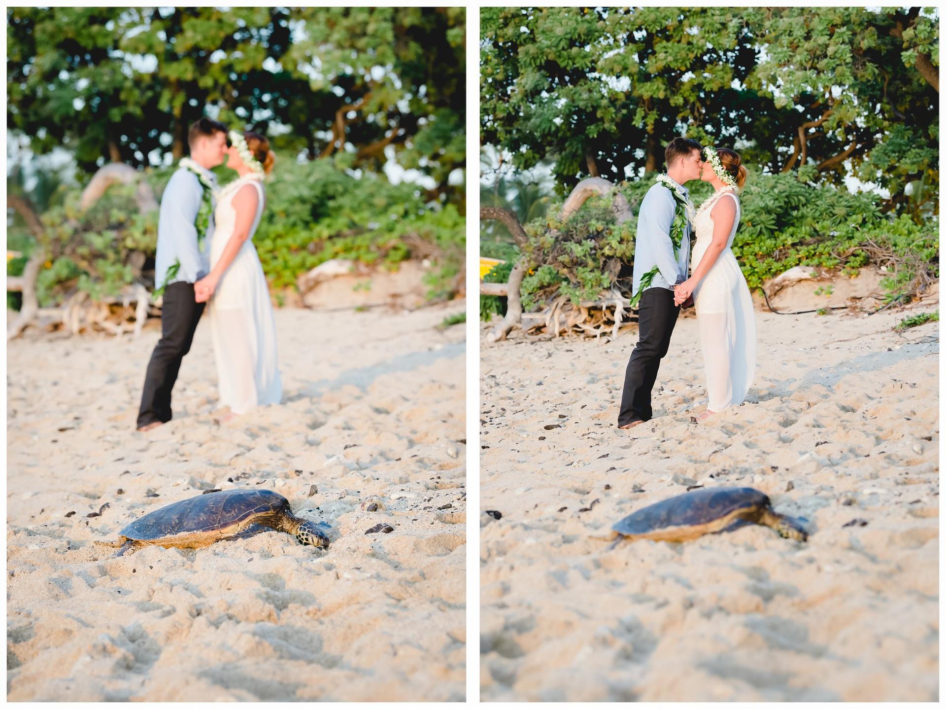 Hawaii Beach Weddings-30.jpg