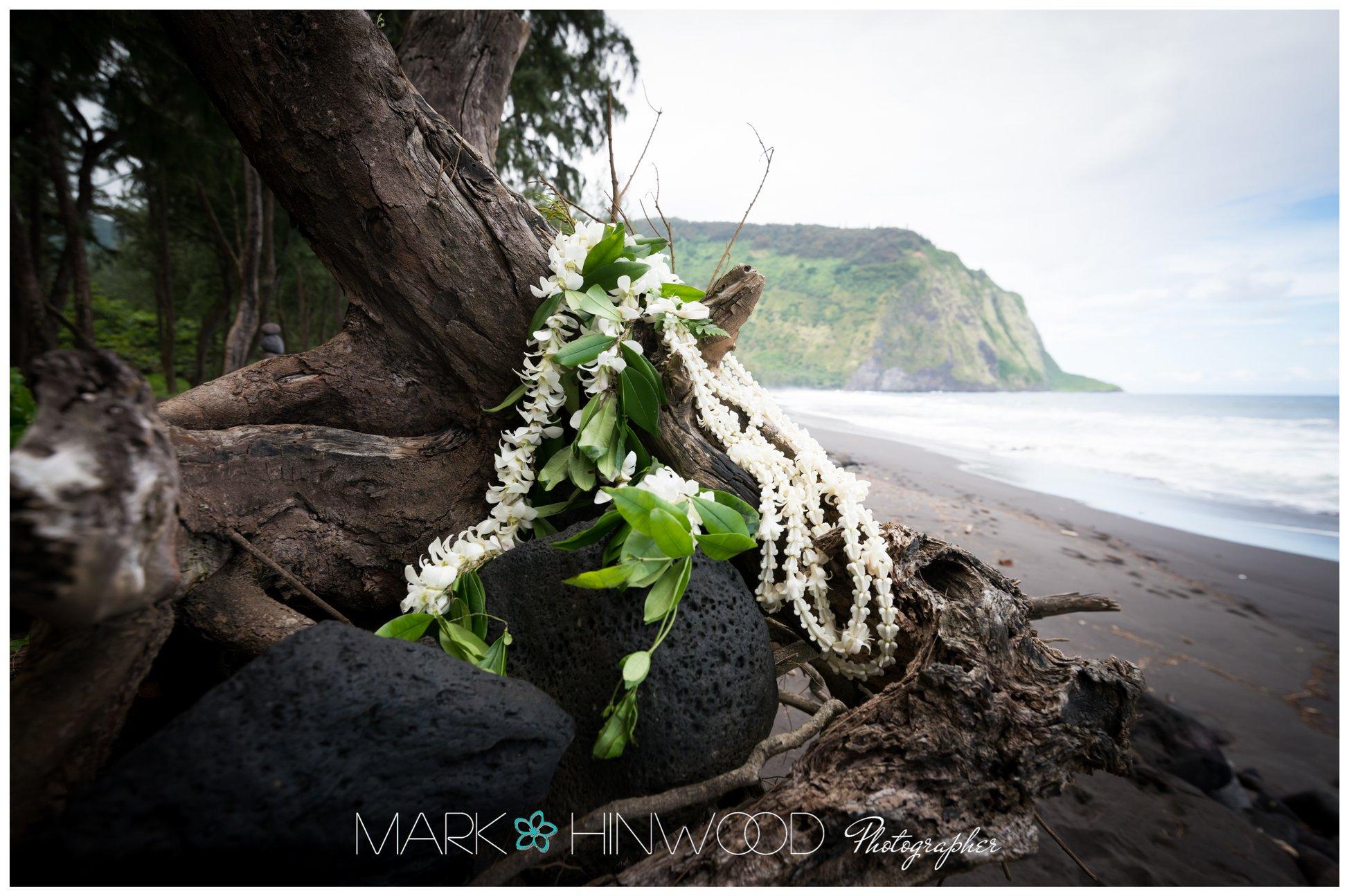 Best Kailua Kona Wedding photographers 2