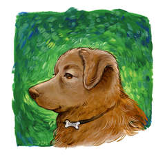 Good doggo.JPG