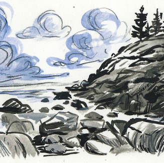 Coastal Mini Study