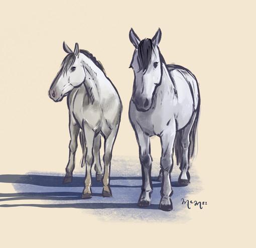 Horsey Pals!