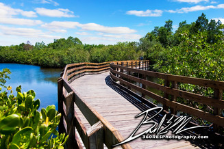 Emerson Point Boardwalk - Palmetto Florida - 360 Real Estate Services, LLC - Photography