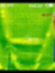 Thermal Image Example Image 2 - 360 Real Estate Services, LLC - Sarasota & Bradenton, Florida