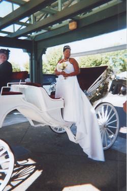 Wedding pecialist