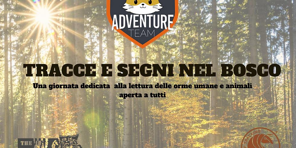 Adventure Kids 10 Ottobre: tracce e segni nel bosco