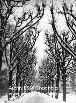 Stromořadí,1959
