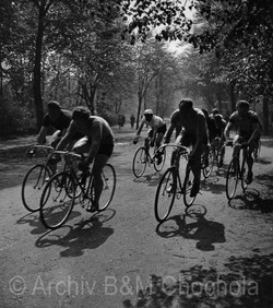 Cyklisté ve Stromovce, 1943