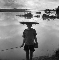 Vietnam (17)
