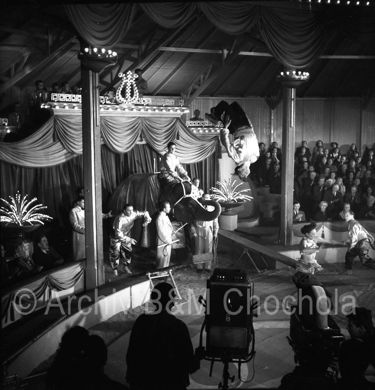 Film Cirkus Bude 1954_042
