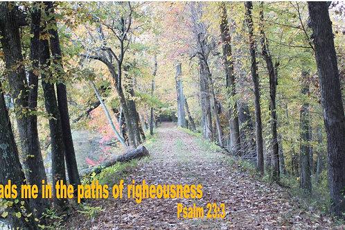 Psalm 23:3 Paths