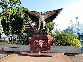 Белобрюхий орлан символ Краби