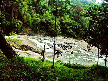 Khao Luang NP. Karom
