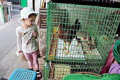 Опыт путешествия с ребенком 6 лет в Таиланд Бангкок