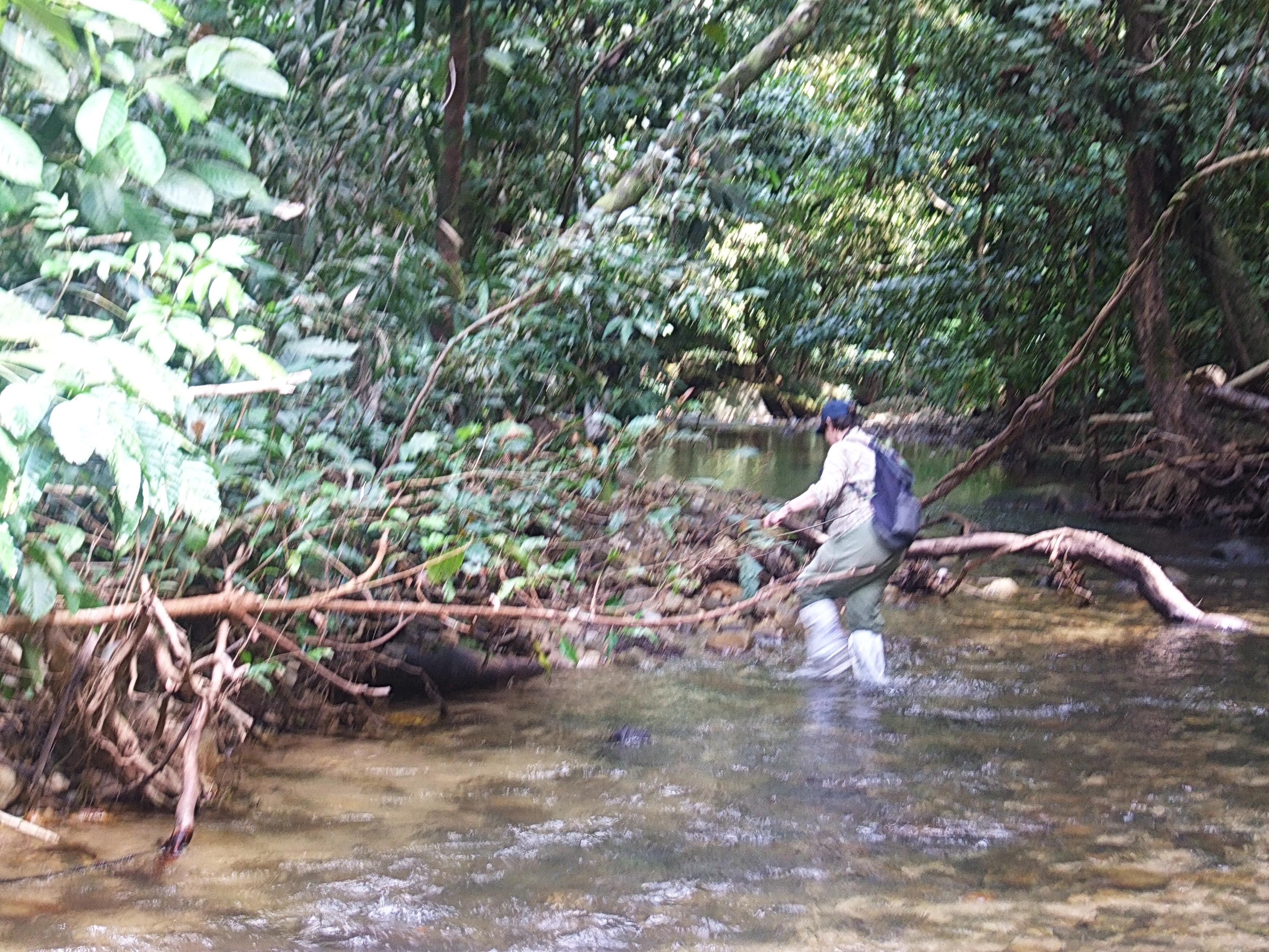 Река в Хала Бала.