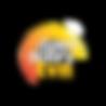 tvn logo.png