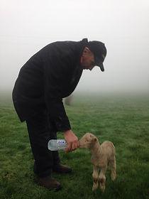 Ted and lamb JPG.JPG