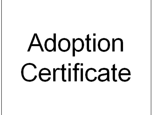 Adoption Certificate (UK)