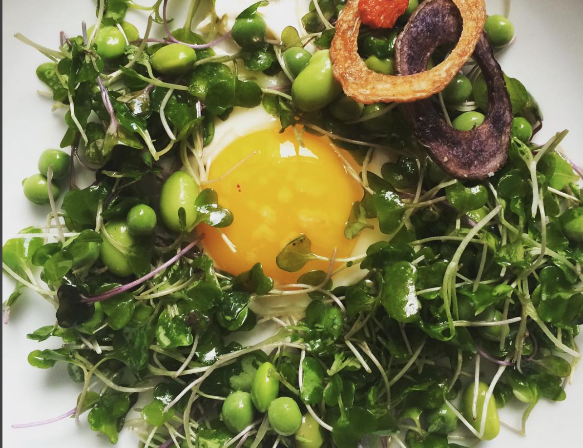 Micro greens, edamame, egg.