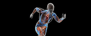 pat-cash-sports-biomechanics.jpg