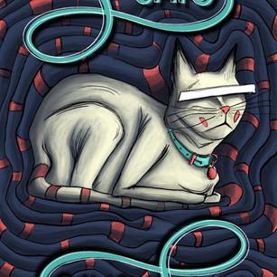 Kedi(cat)