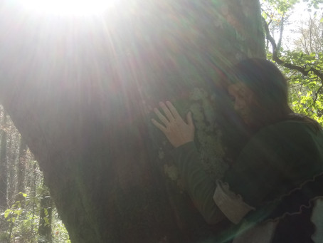 The 6 Elements to Self-Care and Love  1. Tree Hugging