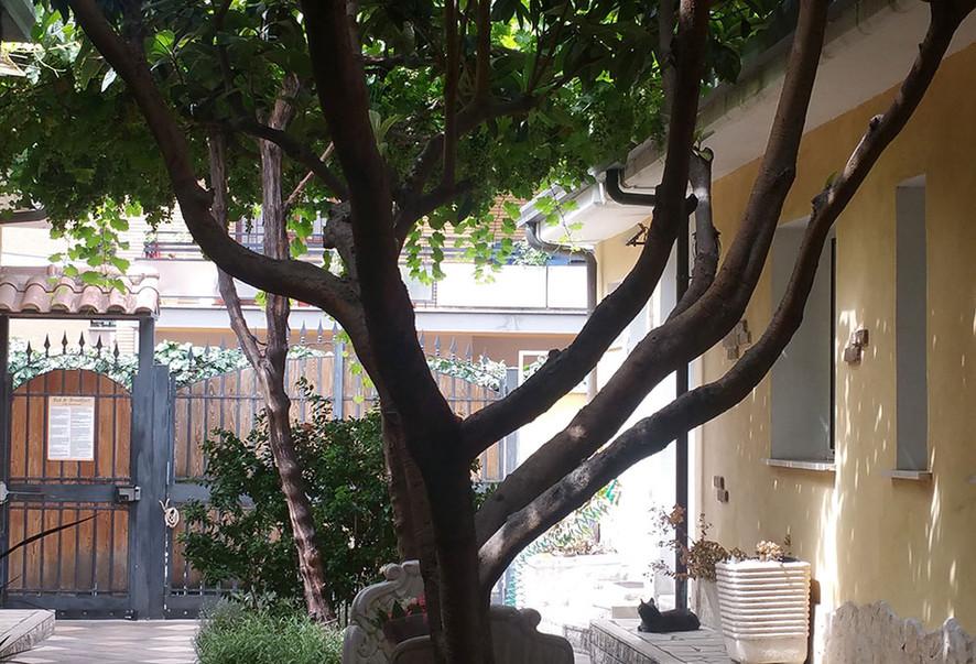 Villa dei Colli Portuensi