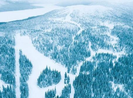 Din guide till skidåkning i Borgafjäll - Del 1