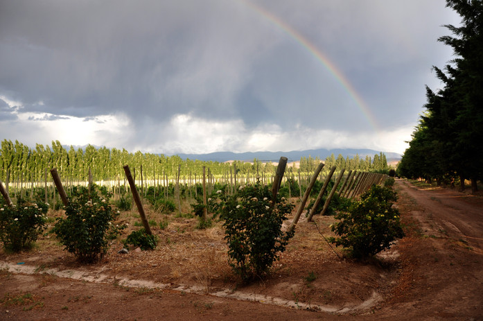Valle Calingasta
