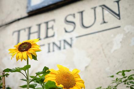 Pub Sunflowers.jpg