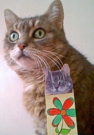 TILU, adoptée le 18 septembre 2003 par Patricia, Charlotte et Laura.