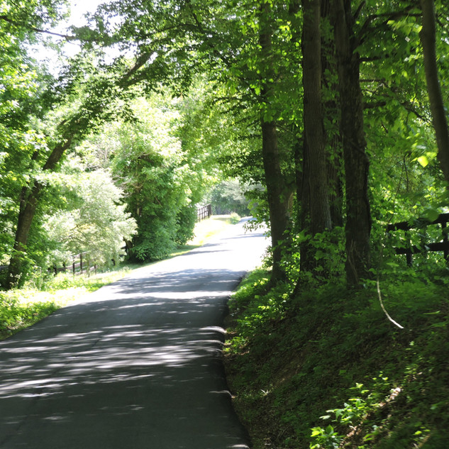 country road.JPG