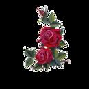roses.png