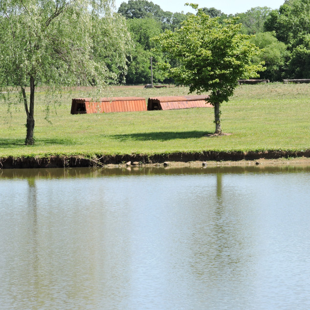 pond grounds.JPG
