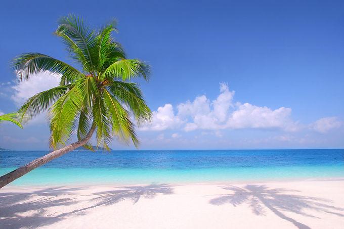 Beach Cover.jpg