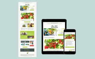 Newsletter Point Vert