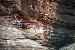 Synapse Collapse 5.11d