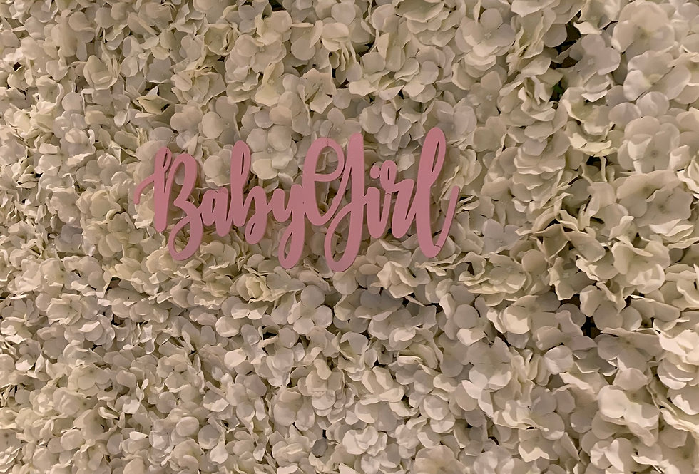 Pink Baby Girl Sign