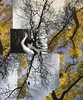 collage 05.jpg