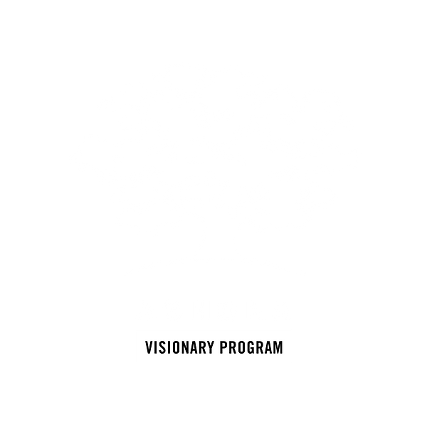 Ashoka Visionary Program (1).png