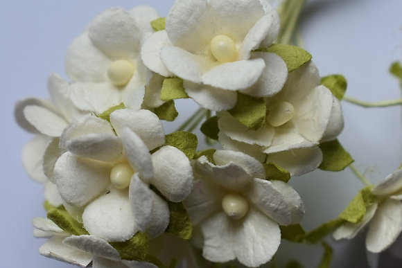 Petites fleurs x10